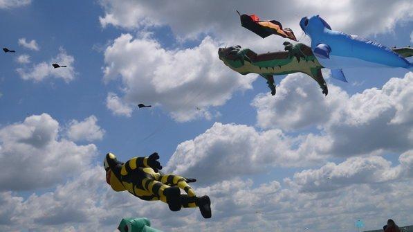 Летающие животные и рыбы: как на Николаевщине будет проходить фестиваль воздушных змеев , фото-1