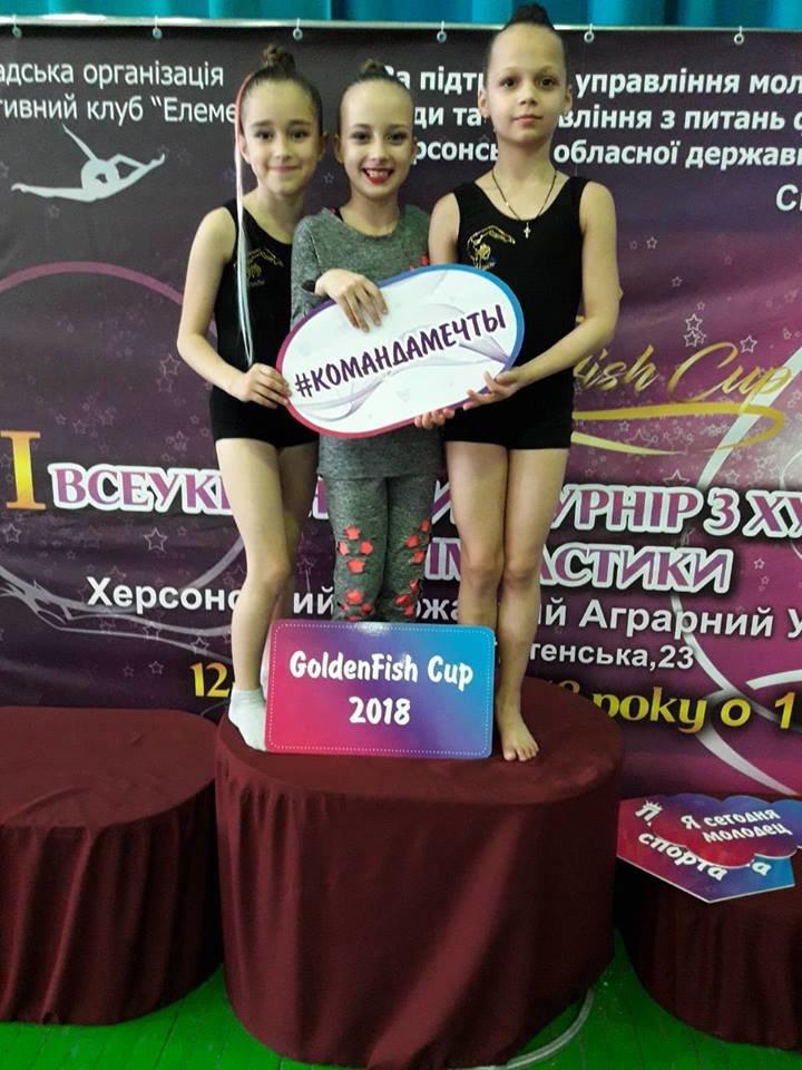 Маленькие Николаевские гимнастки привезли домой уйму медалей со Всеукраинского турнира, - ФОТО, фото-1
