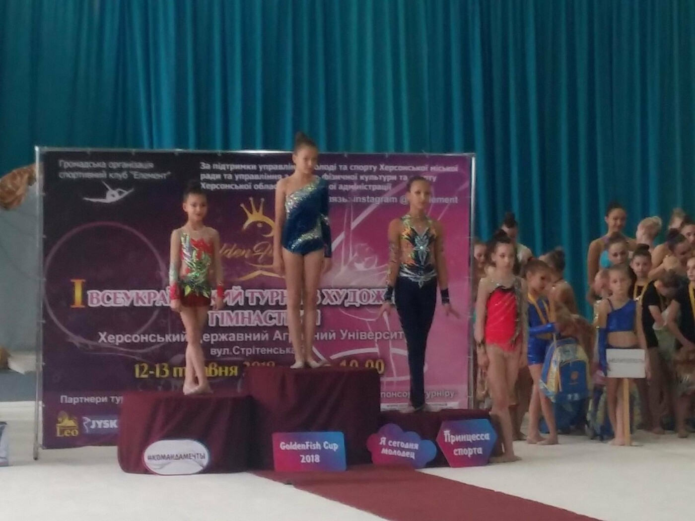 Маленькие Николаевские гимнастки привезли домой уйму медалей со Всеукраинского турнира, - ФОТО, фото-7