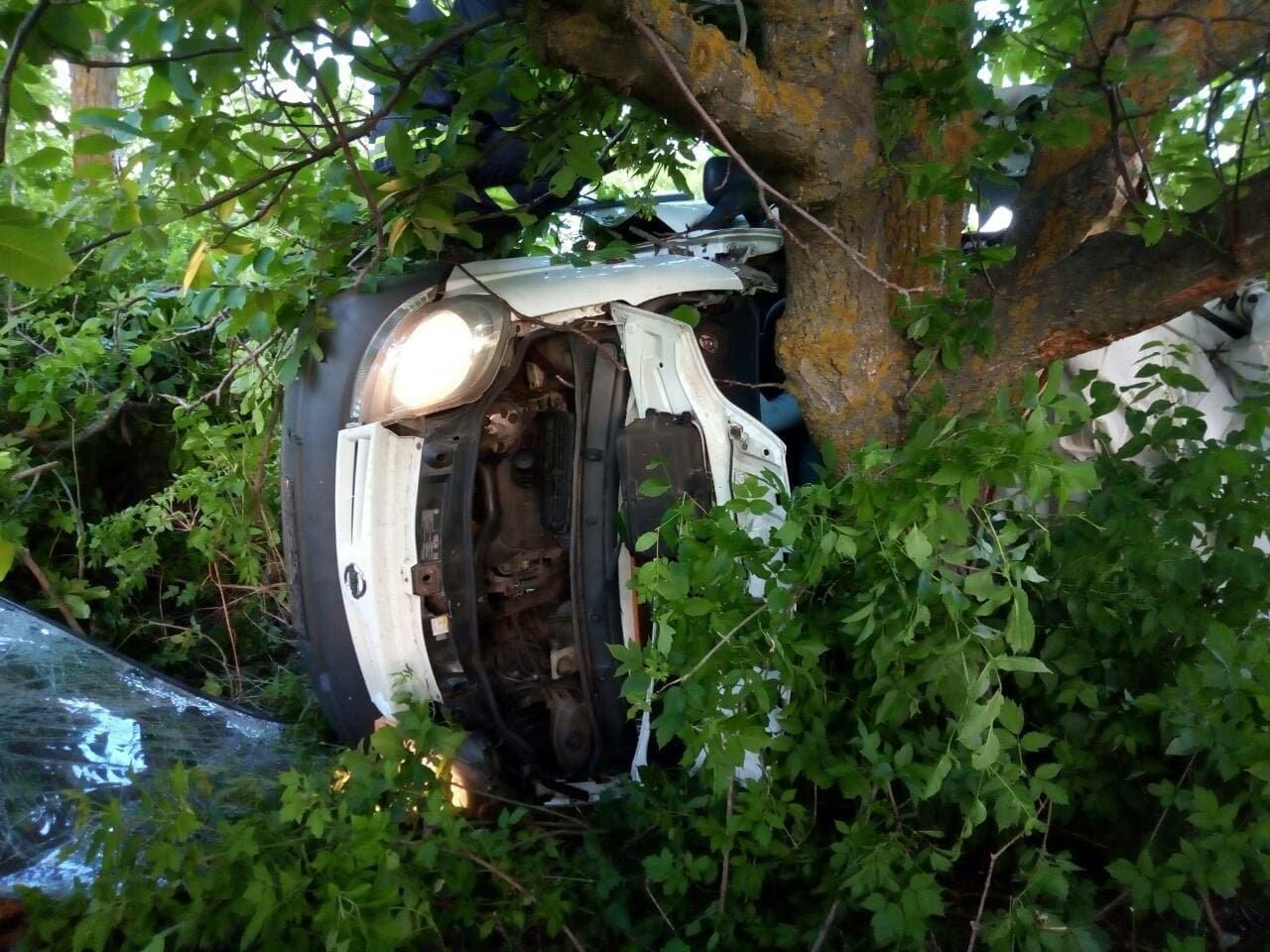 5 человек погибло, 3 находятся в больнице: в Николаевской области случилось страшное ДТП, - ФОТО, фото-2