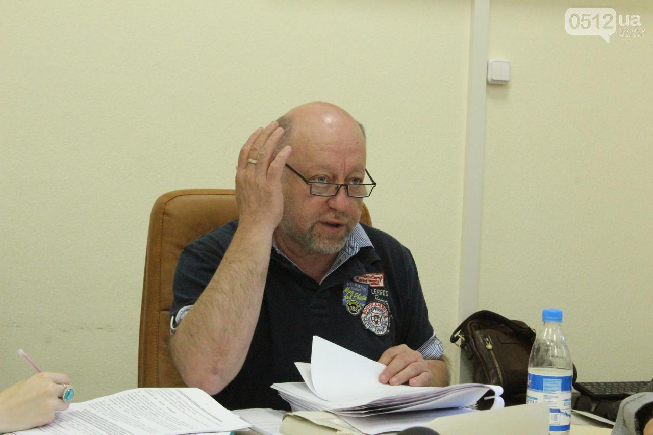 Городская власть обсудила вопрос аварийных веток на улицах Николаева, фото-2