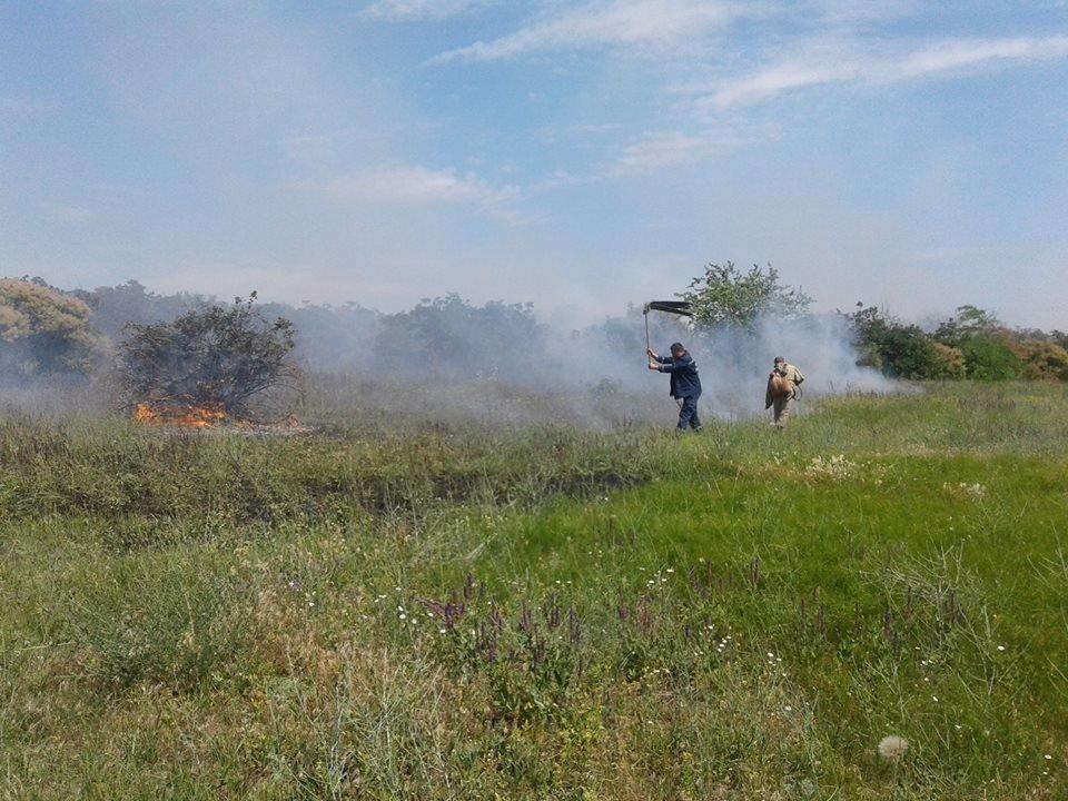 За прошедшие сутки в Николаевской области прошло шесть пожаров, - ФОТО, фото-4