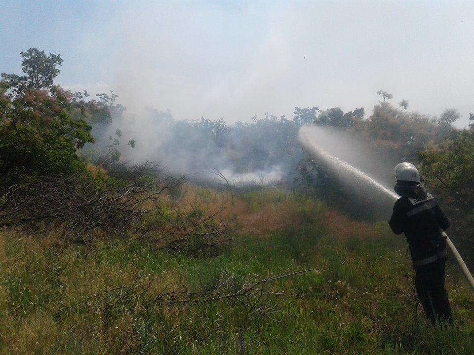За прошедшие сутки в Николаевской области прошло шесть пожаров, - ФОТО, фото-3