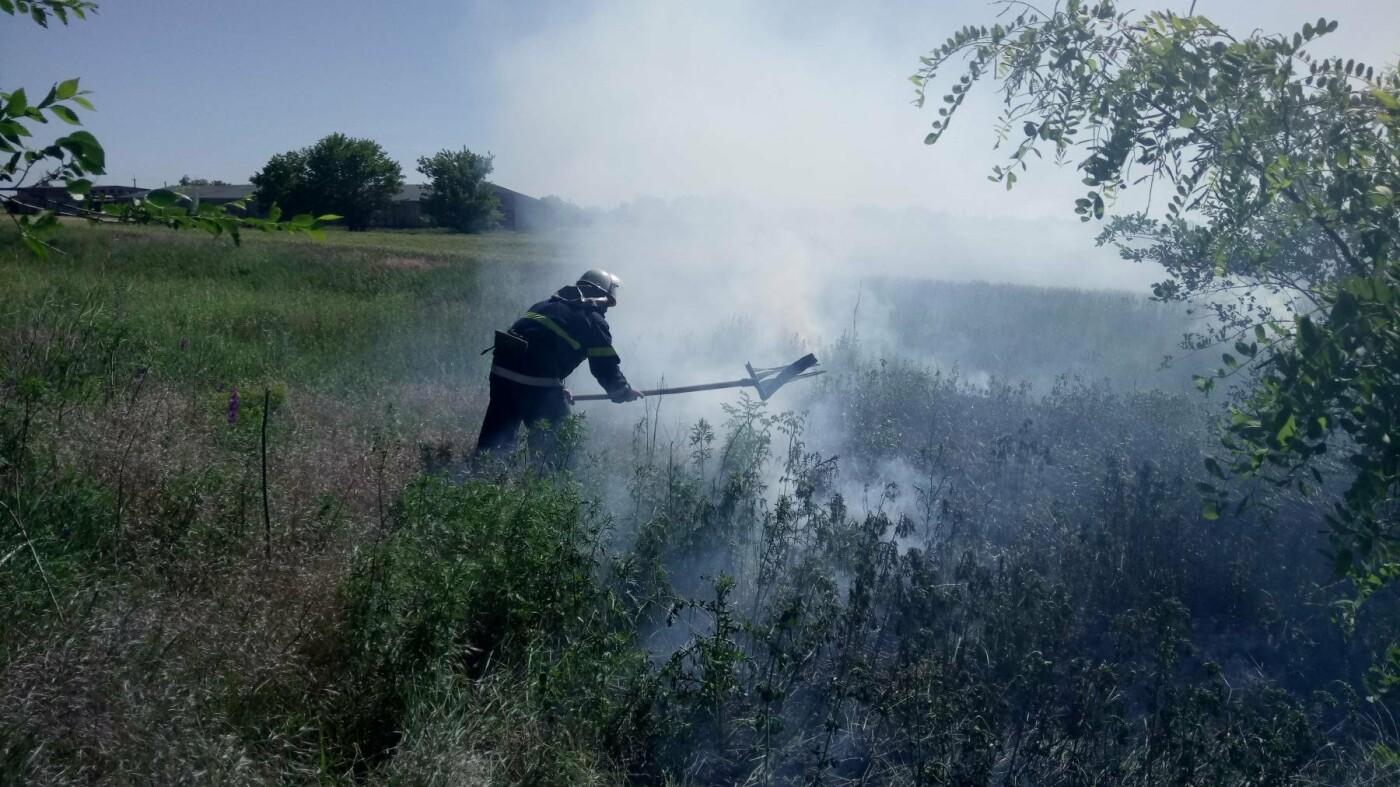 На Николаевщине небрежность граждан спровоцировала 14 пожаров, - ФОТО , фото-1