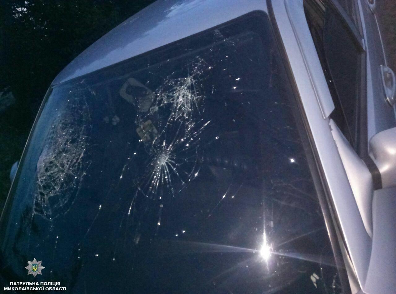На Николаевщине из-за превышения скорости произошло ДТП, - ФОТО, фото-2