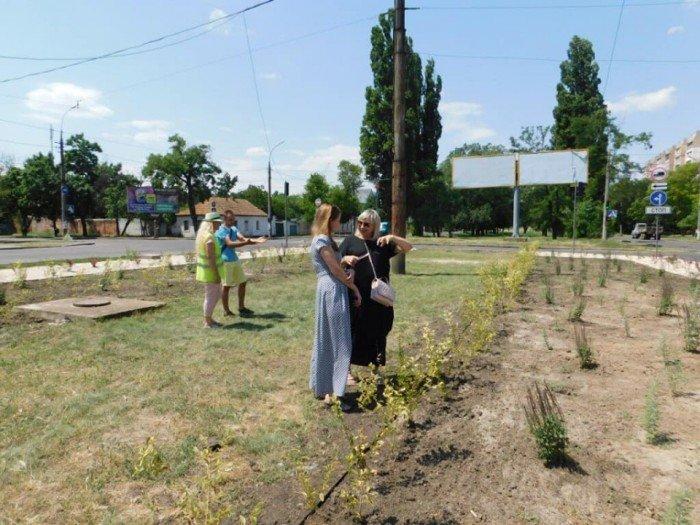 В Николаеве появилась новая озелененная зона, - ФОТО, ВИДЕО, фото-1