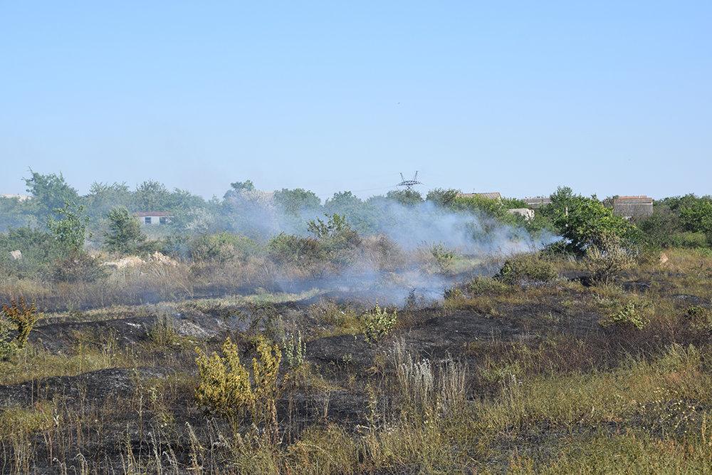 На территории Николаевщины спасатели продолжают тушить пожары сухостоя, - ФОТО, фото-10