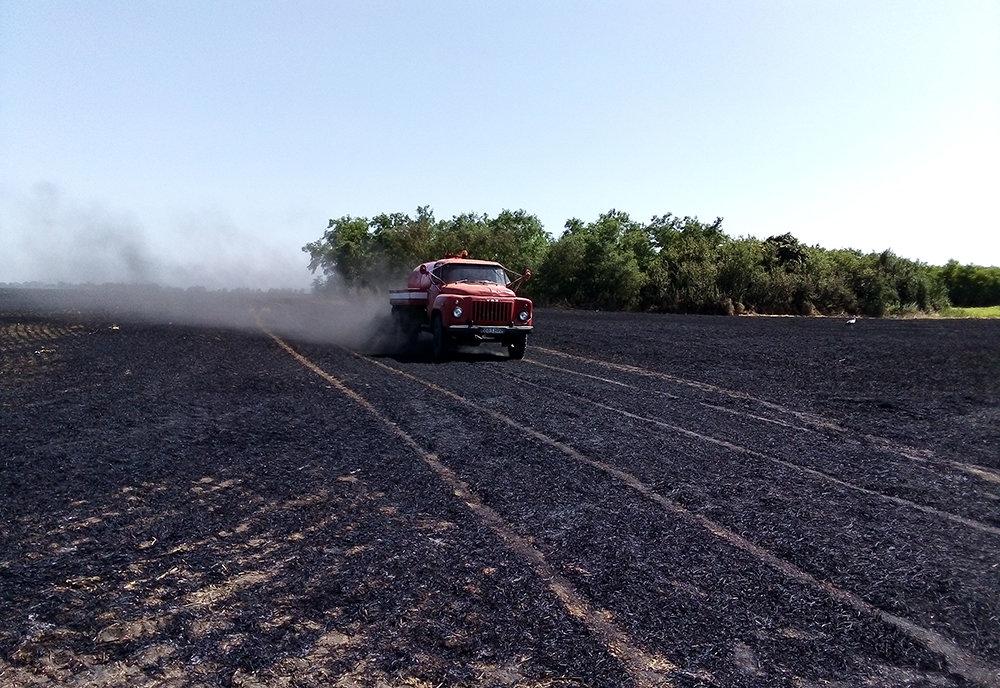 На территории Николаевщины спасатели продолжают тушить пожары сухостоя, - ФОТО, фото-3