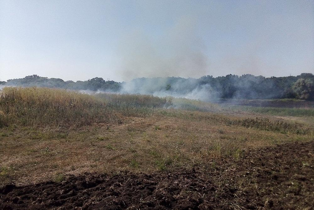 На территории Николаевщины спасатели продолжают тушить пожары сухостоя, - ФОТО, фото-1