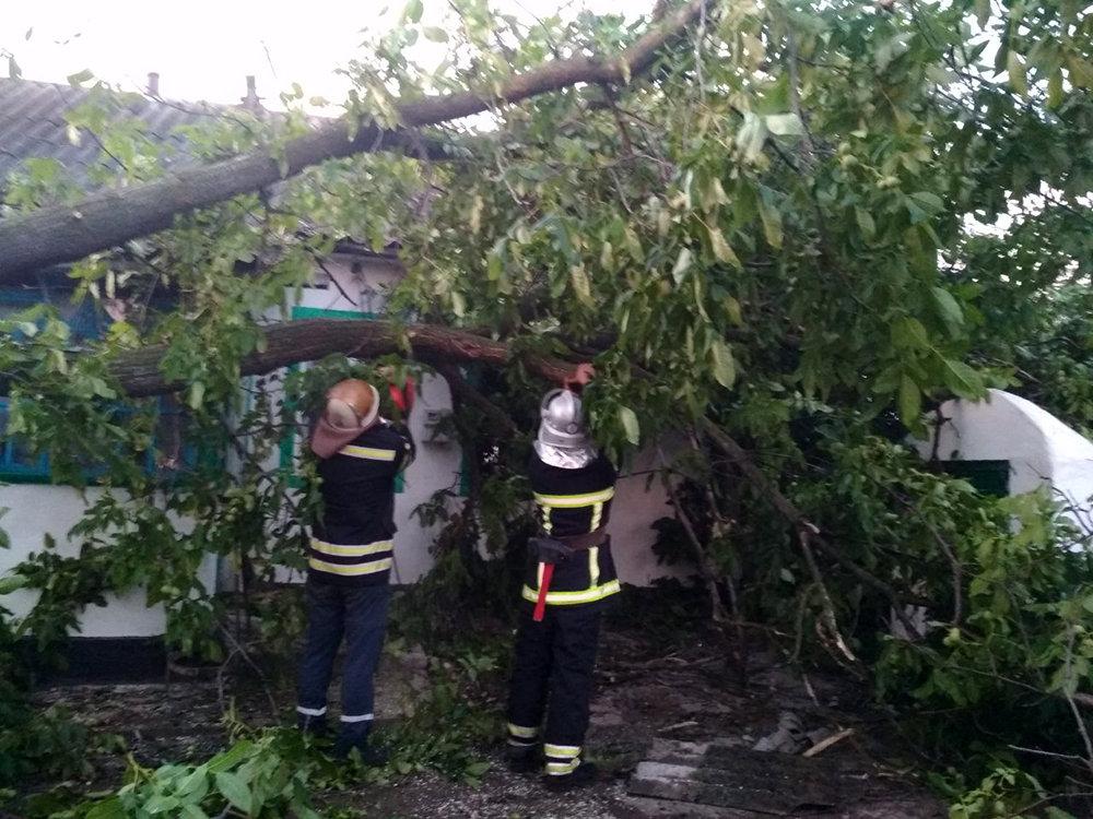 Спасатели Николаевщины ликвидировали последствия непогоды, - ФОТО, фото-1