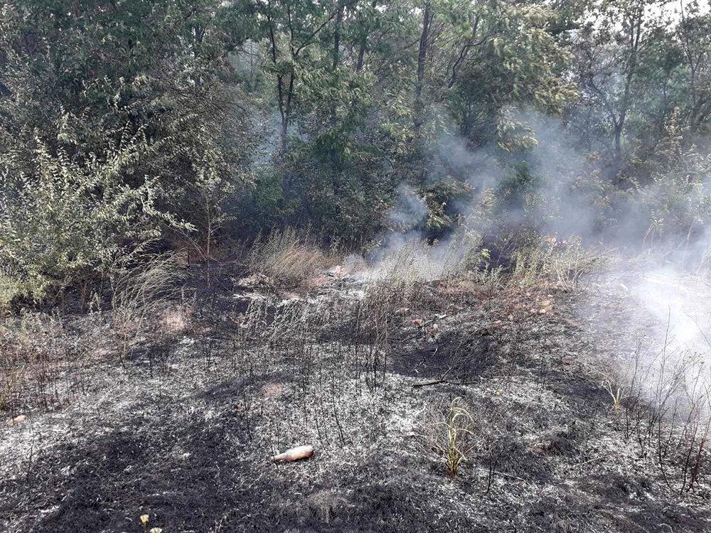 Спасатели Николаевщины ликвидировали пожары на открытых территориях, - ФОТО, фото-1