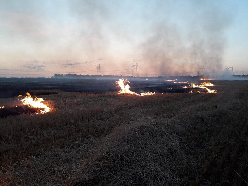 Спасатели Николаевщины потушили 17 пожаров на открытых территориях, - ФОТО, фото-2