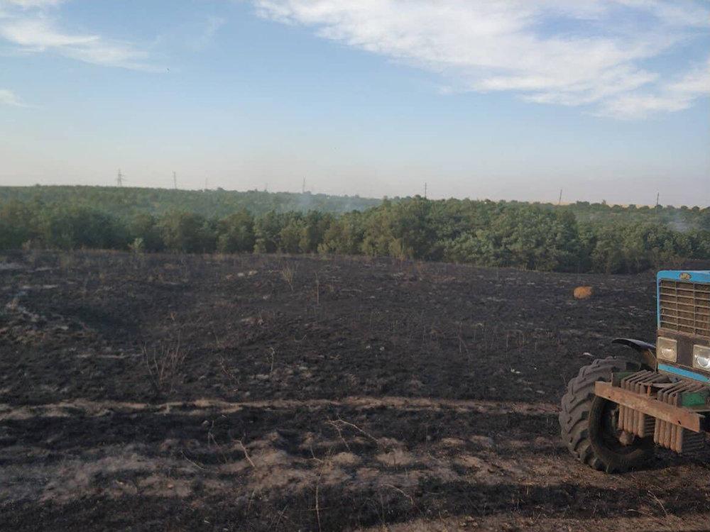 За прошлые сутки спасатели Николаевщины потушили 19 пожаров в природных  экосистемах, - ФОТО, фото-10