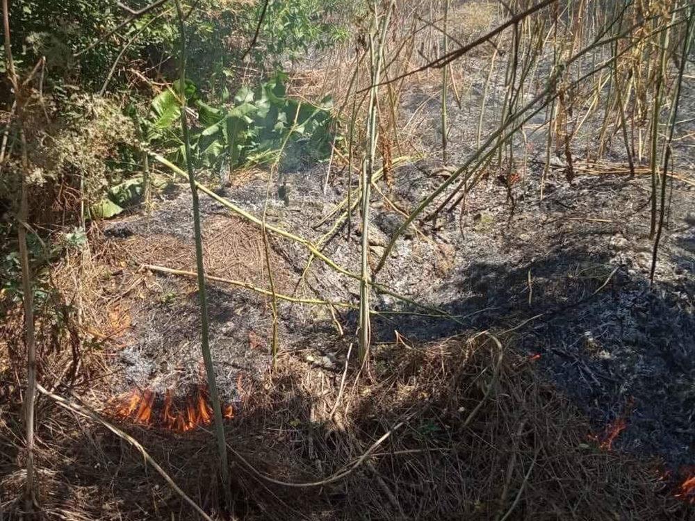 За прошлые сутки спасатели Николаевщины потушили 19 пожаров в природных  экосистемах, - ФОТО, фото-9