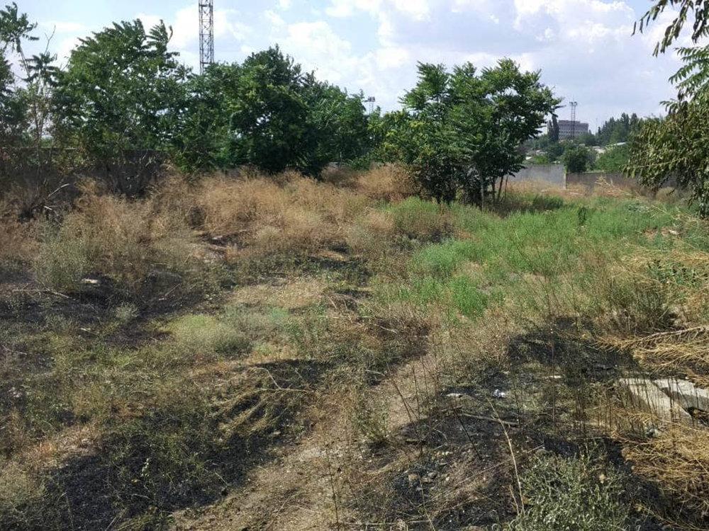 За прошлые сутки спасатели Николаевщины потушили 19 пожаров в природных  экосистемах, - ФОТО, фото-8