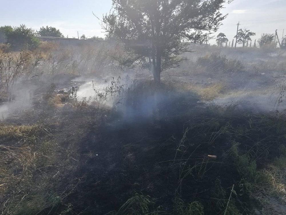 За прошлые сутки спасатели Николаевщины потушили 19 пожаров в природных  экосистемах, - ФОТО, фото-7