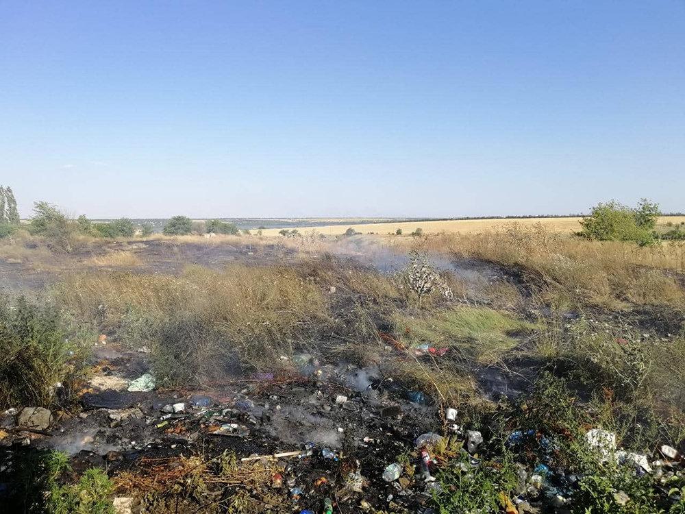 За прошлые сутки спасатели Николаевщины потушили 19 пожаров в природных  экосистемах, - ФОТО, фото-4