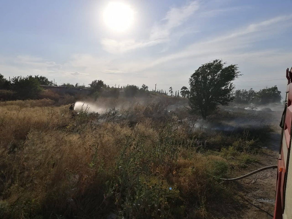За прошлые сутки спасатели Николаевщины потушили 19 пожаров в природных  экосистемах, - ФОТО, фото-3