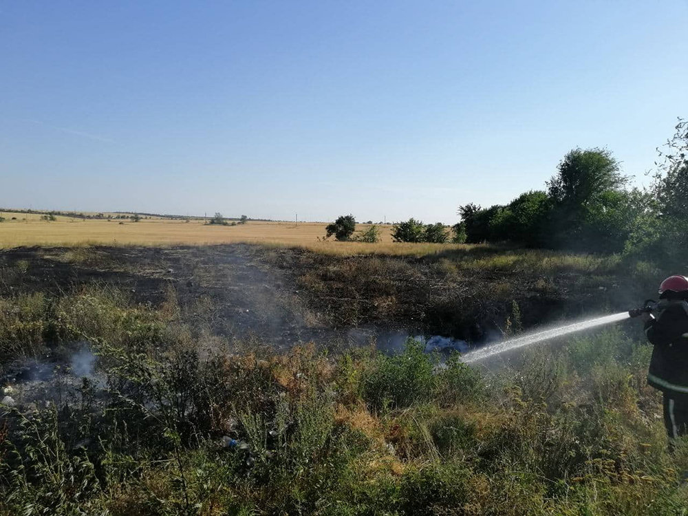За прошлые сутки спасатели Николаевщины потушили 19 пожаров в природных  экосистемах, - ФОТО, фото-2