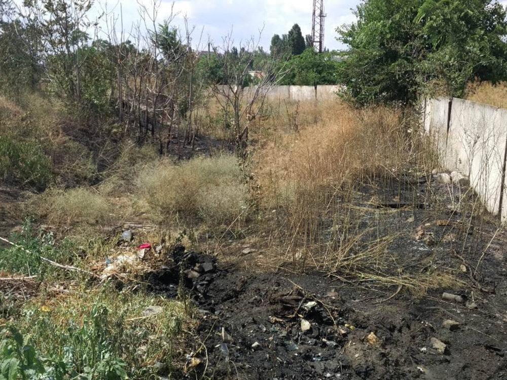 За прошлые сутки спасатели Николаевщины потушили 19 пожаров в природных  экосистемах, - ФОТО, фото-1