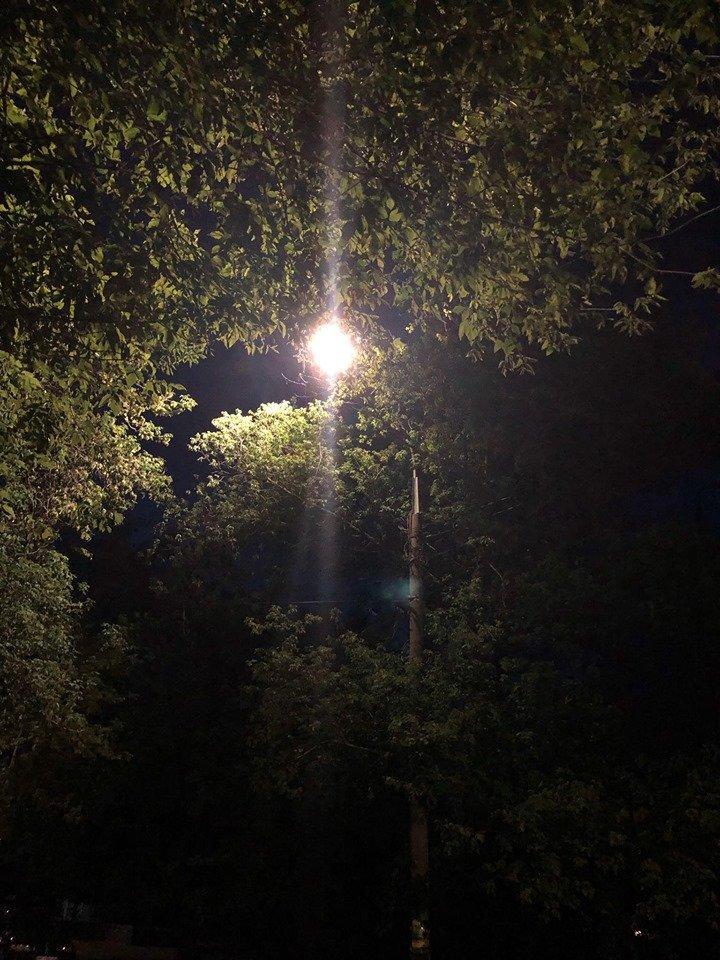 В Николаеве модернизируют систему уличного освещения, фото-1