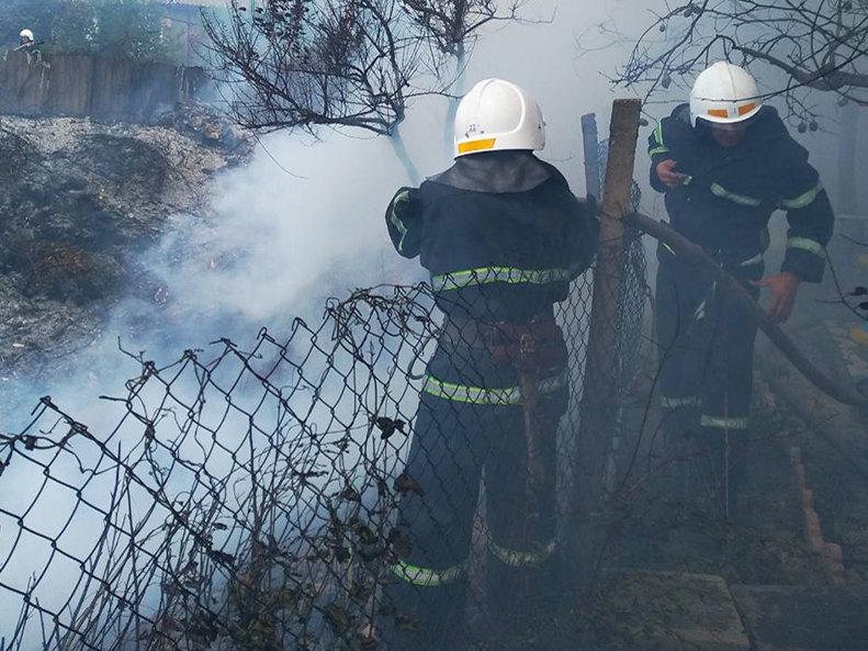 На Николаевщине за прошлые сутки зарегистрировано 10 пожаров сухостоя, - ФОТО, фото-4