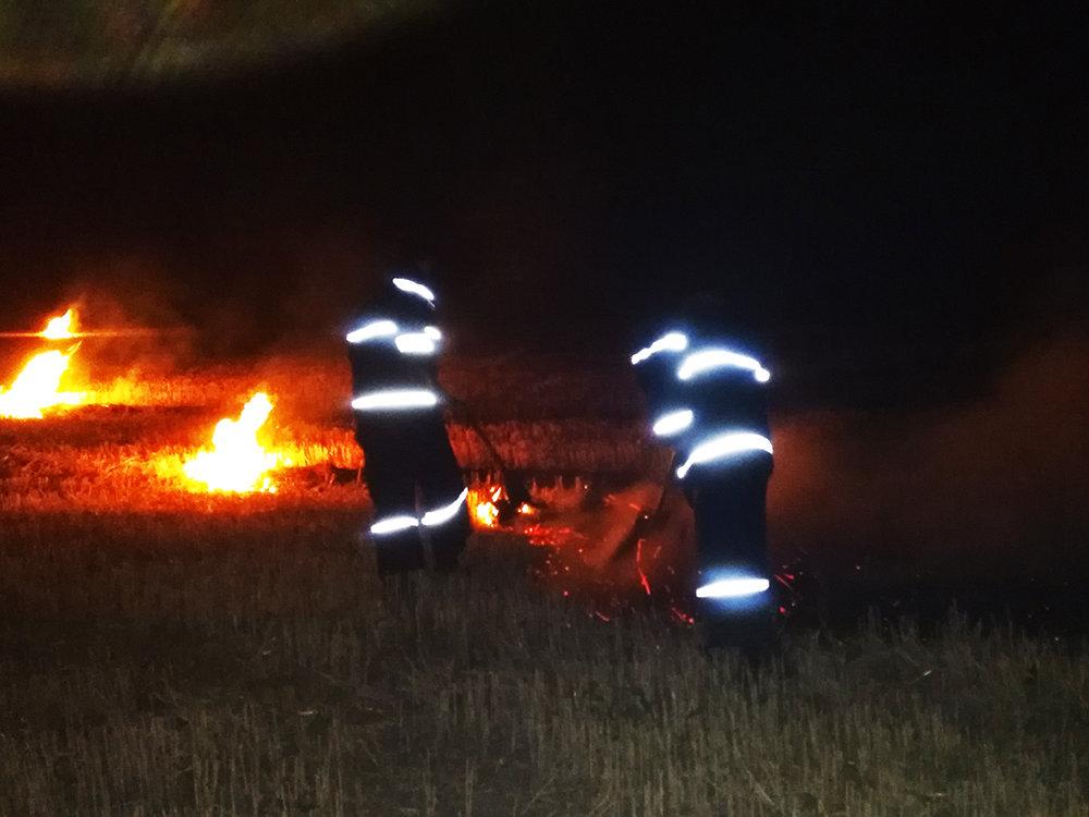 На Николаевщине за прошлые сутки зарегистрировано 10 пожаров сухостоя, - ФОТО, фото-1