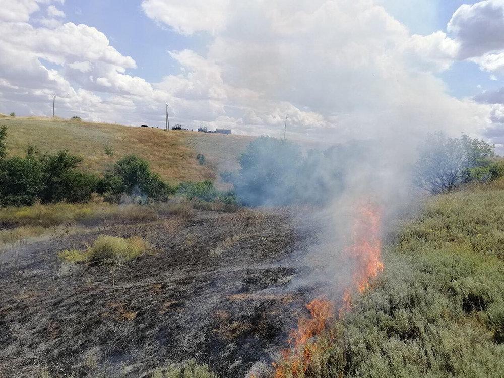 На Николаевщине выгорело более 15 га сухостоя и питательных остатков, - ФОТО, фото-3