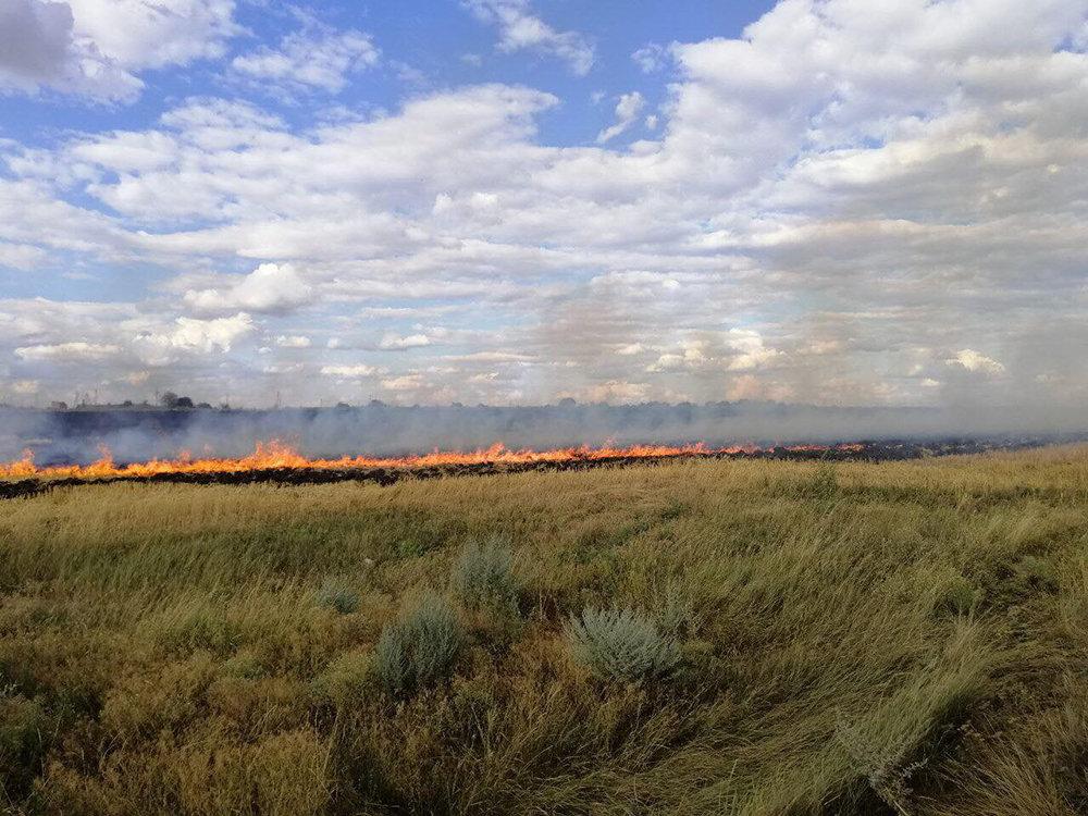На Николаевщине выгорело более 15 га сухостоя и питательных остатков, - ФОТО, фото-2