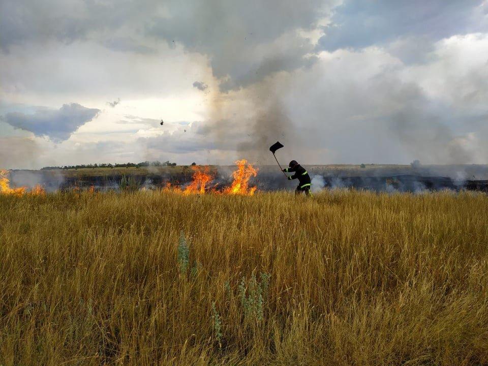В течение суток спасатели потушили 10 пожаров на открытых территориях, - ФОТО, фото-2