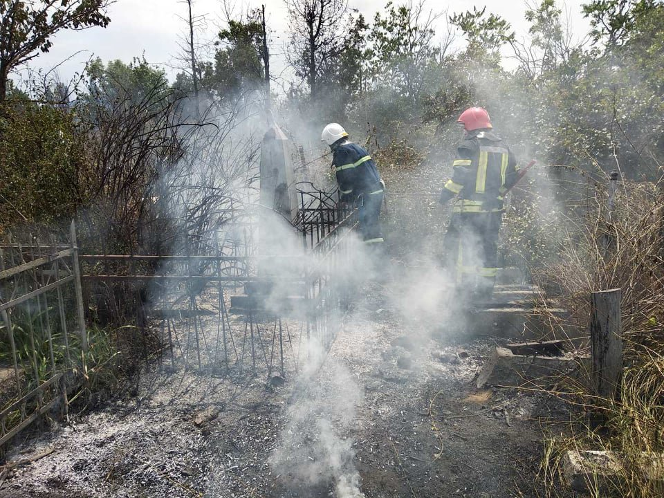 На территории Николаевского некрополя спасатели ликвидируют пожар сухой травы, - ФОТО , фото-3