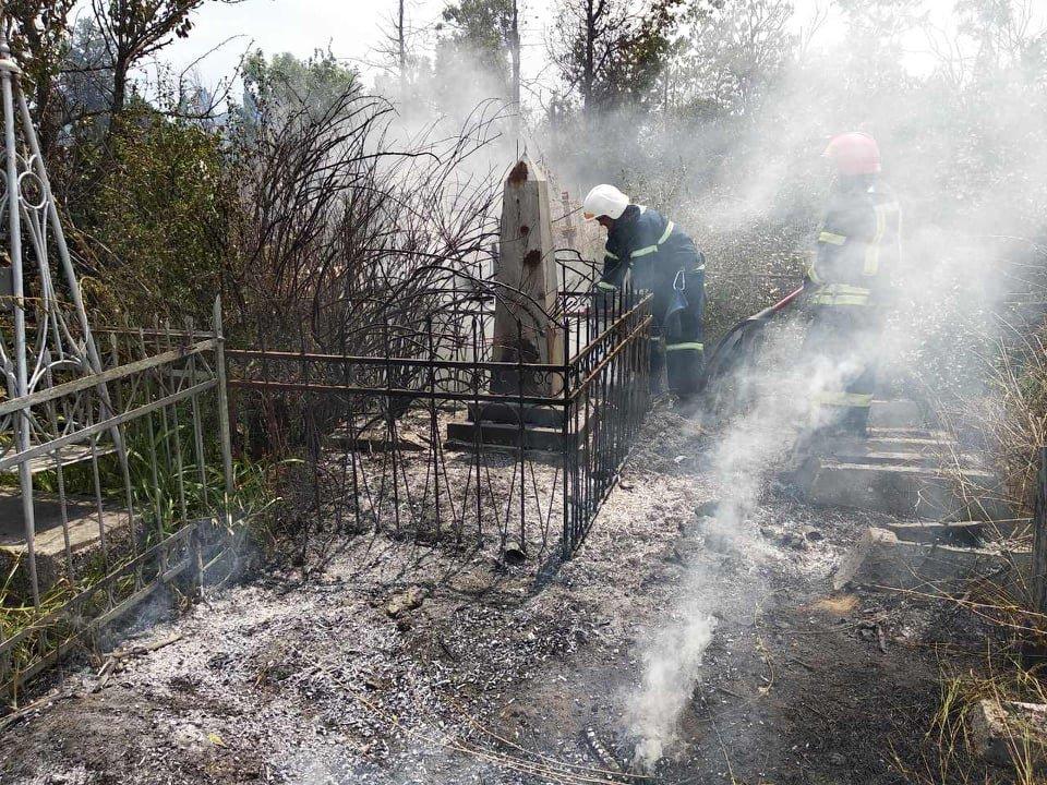 На территории Николаевского некрополя спасатели ликвидируют пожар сухой травы, - ФОТО , фото-2