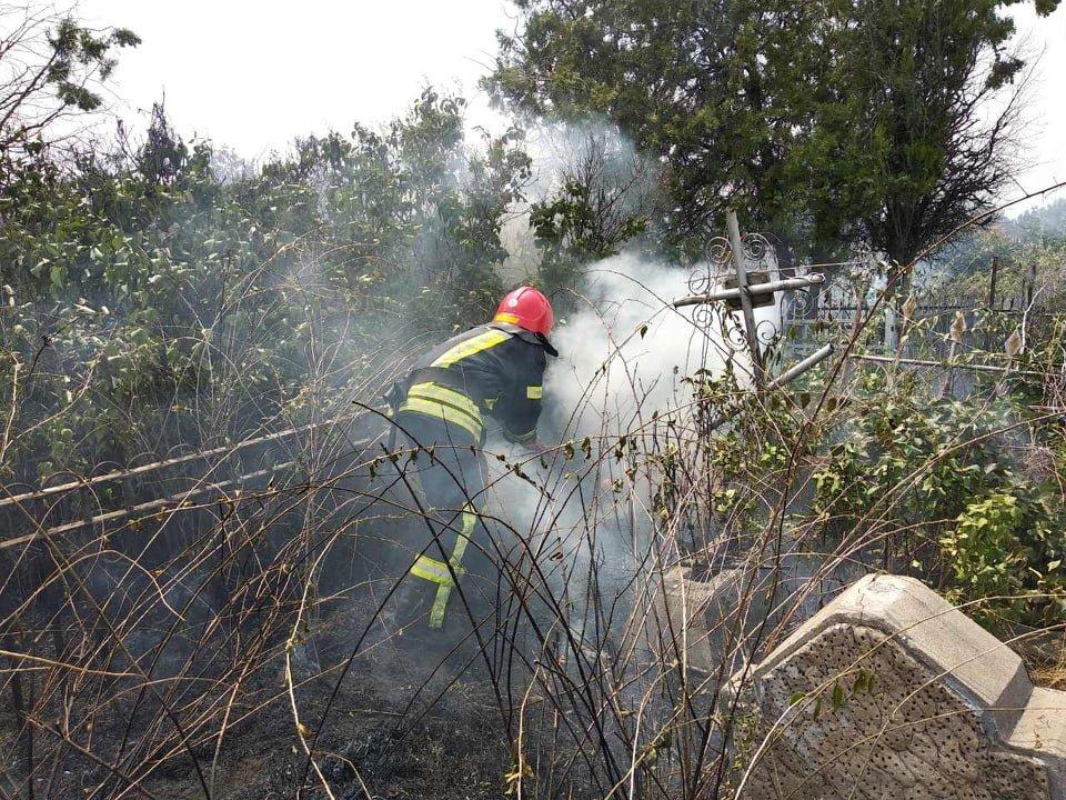 На территории Николаевского некрополя спасатели ликвидируют пожар сухой травы, - ФОТО , фото-1