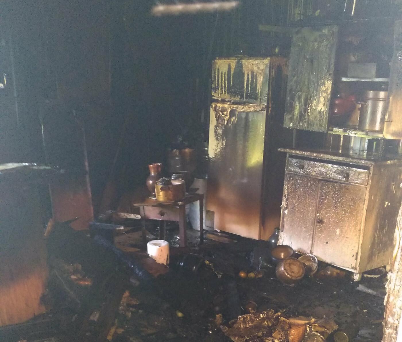 В Николаеве ликвидировали пожар хозяйственной постройки, - ФОТО, фото-1