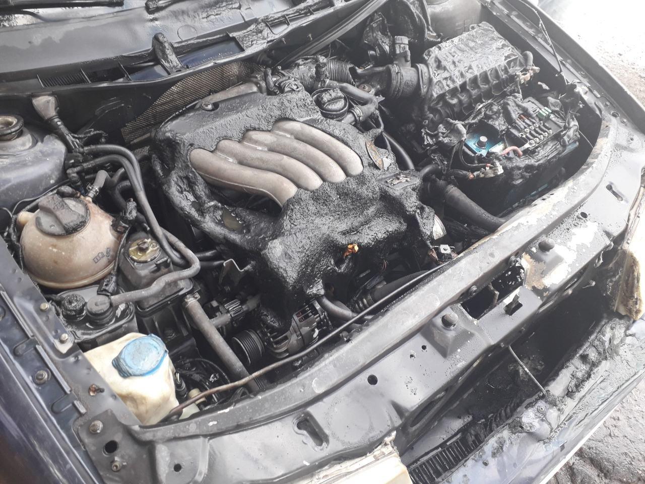 На Николаевщине спасатели потушили пожар автомобиля, - ФОТО, фото-2