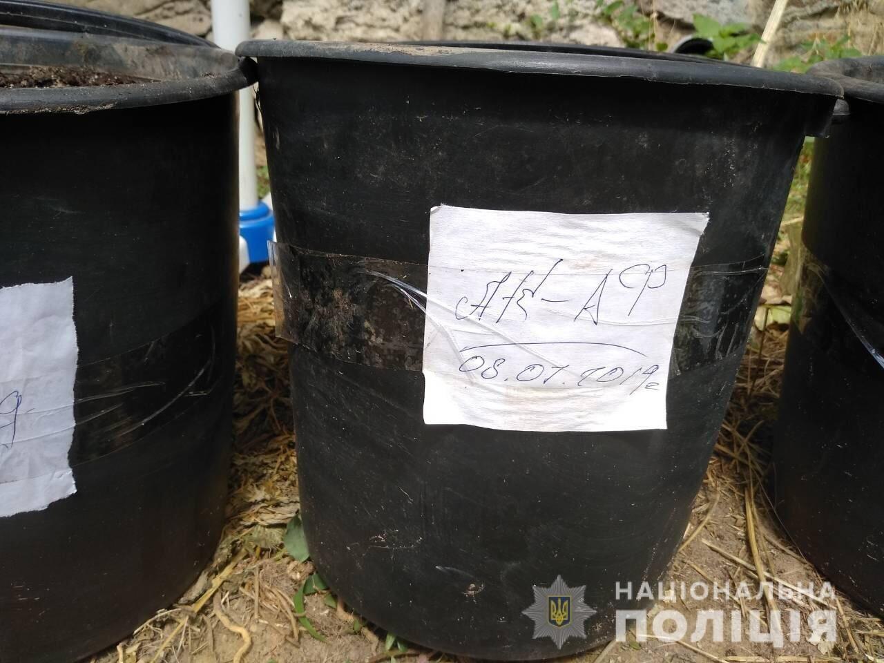"""На Николаевщине полицейские вычислили """"наркобарона"""" - ФОТО , фото-1"""