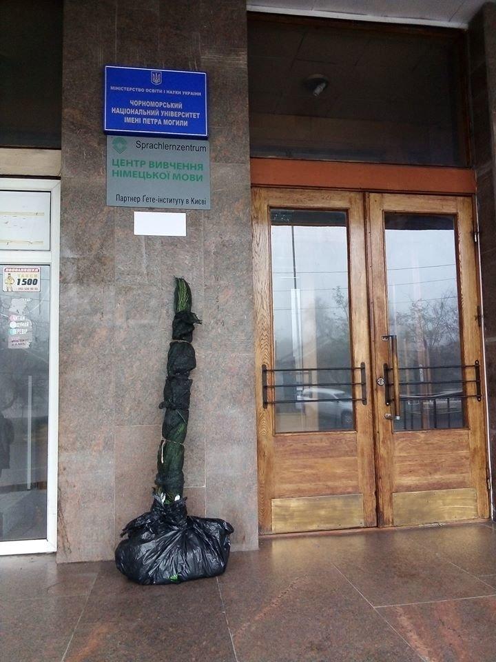 """Николаевской """"Могилянке"""" вернули украденные деревья, - ФОТО , фото-1"""