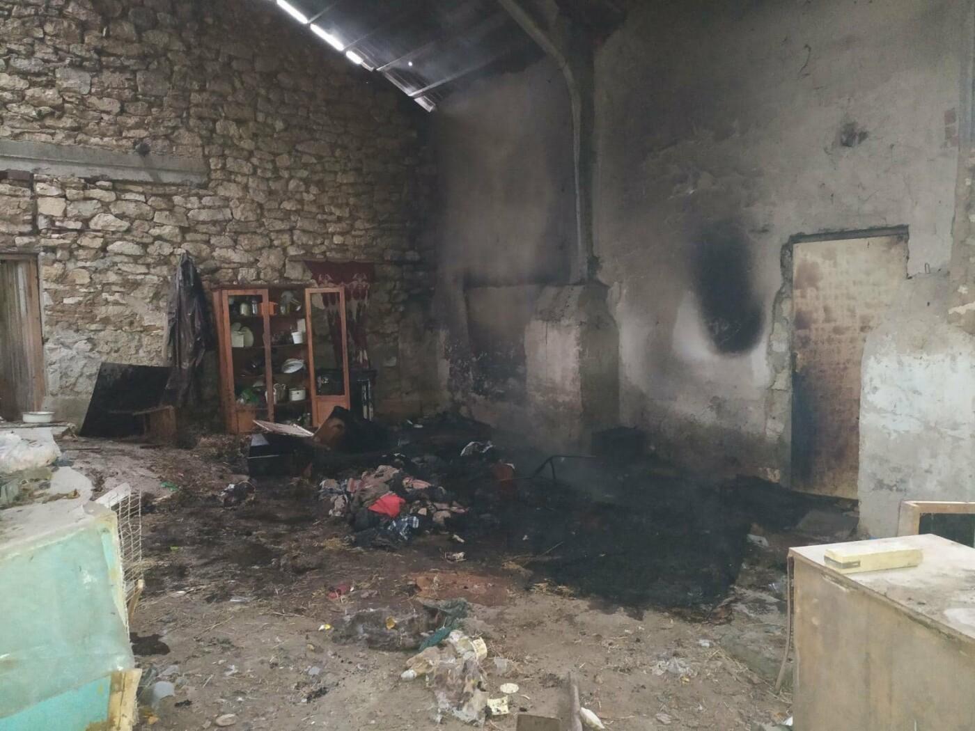 На Николаевщине загорелся мусор - вероятно из-за неосторожного обращения с огнем, фото-1