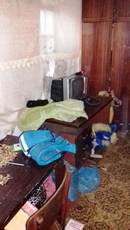 В Николаевской области мать троих детей привлекут к админответствености, - ФОТО, фото-5
