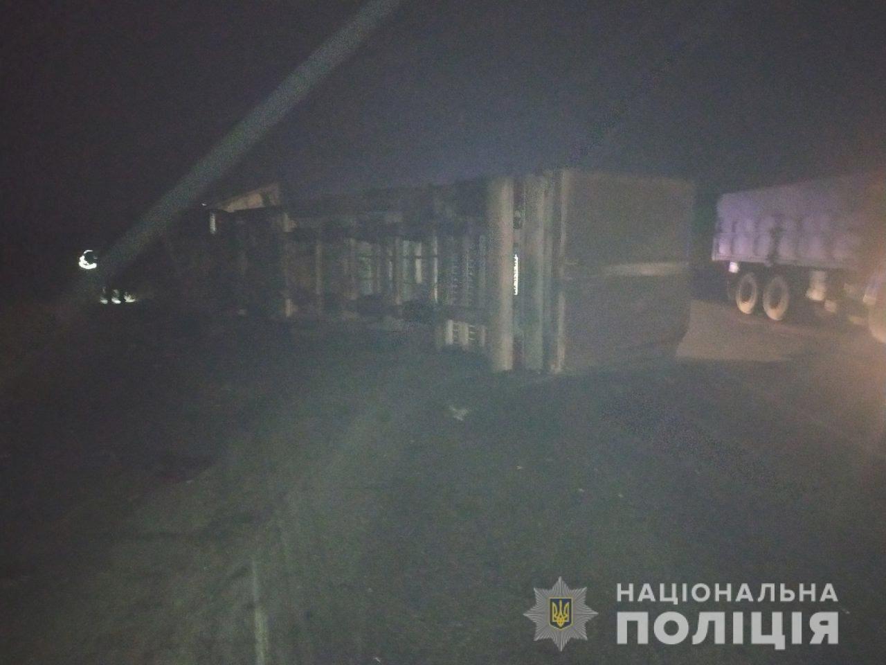 На трассе под Николаевом столкнулись грузовик и легковушка - есть погибший, фото-1