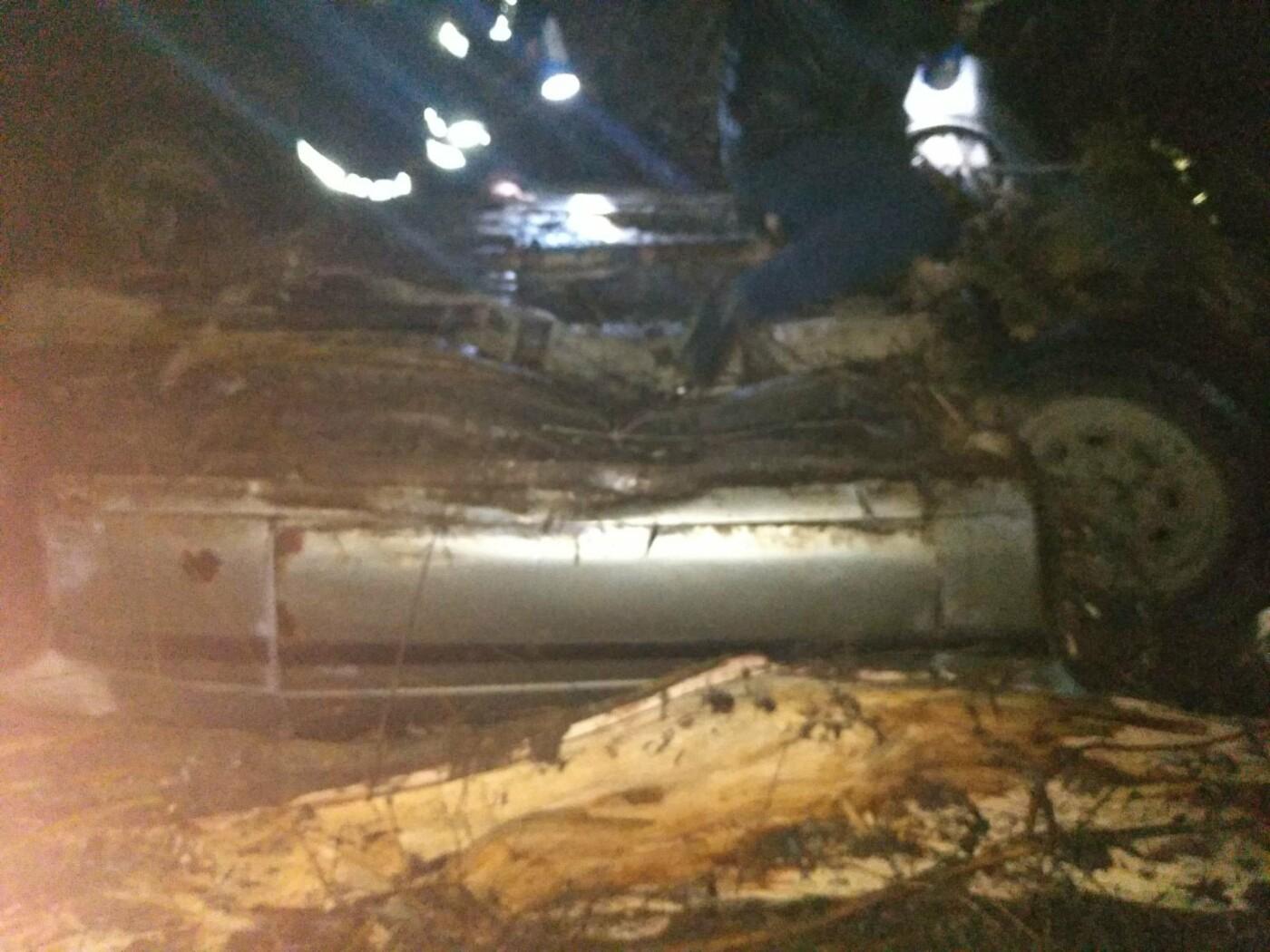 На Николаевщине на ходу загорелось два автомобиля, - ФОТО, фото-2