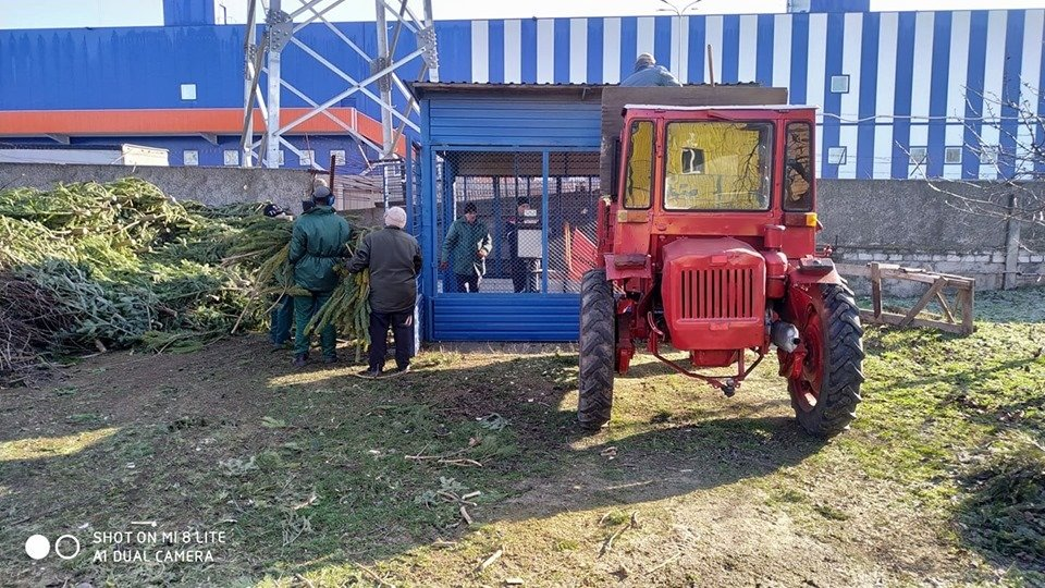 В Николаевский зоопарк люди продолжают привозить сосны и ели, - ФОТО , фото-1