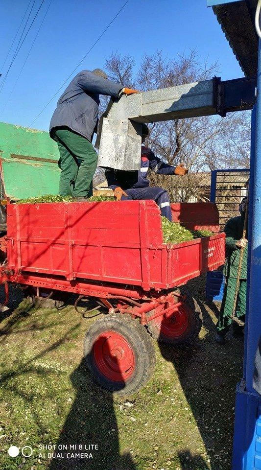 В Николаевский зоопарк люди продолжают привозить сосны и ели, - ФОТО , фото-9