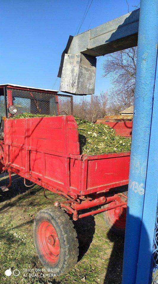 В Николаевский зоопарк люди продолжают привозить сосны и ели, - ФОТО , фото-7