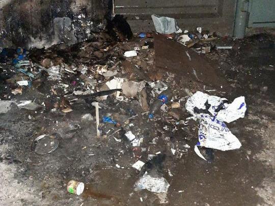 В Николаеве из-за мусора загорелся киоск, - ФОТО, фото-2