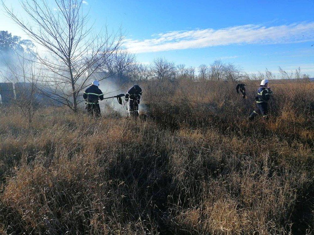 На Николаевщине из-за поджогов горело 5 гектаров камыша, - ФОТО, ВИДЕО, фото-2