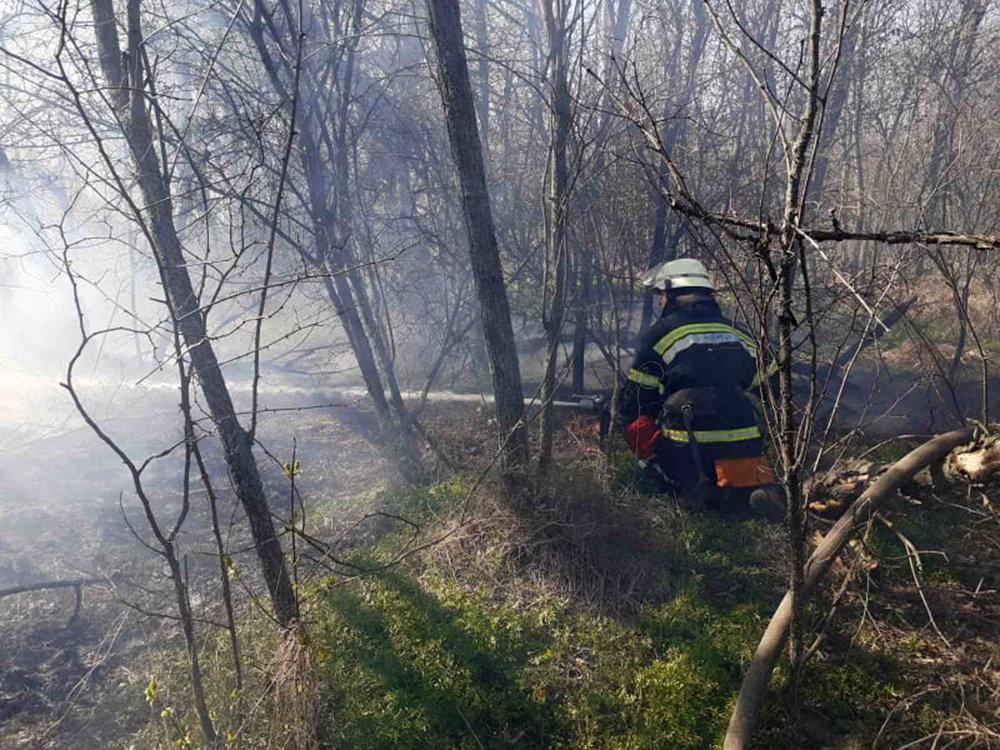 В Николаевской области за сутки семь раз загорался сухостой, - ФОТО, фото-4