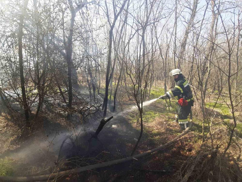 В Николаевской области за сутки семь раз загорался сухостой, - ФОТО, фото-5