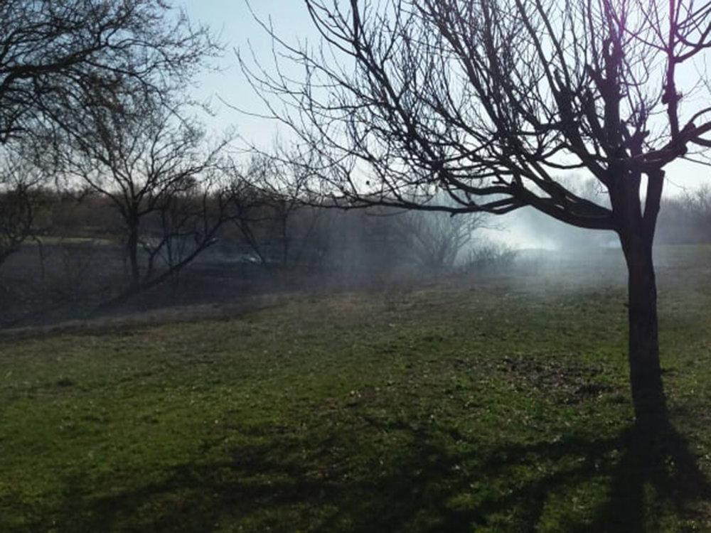 В Николаевской области за сутки семь раз загорался сухостой, - ФОТО, фото-9