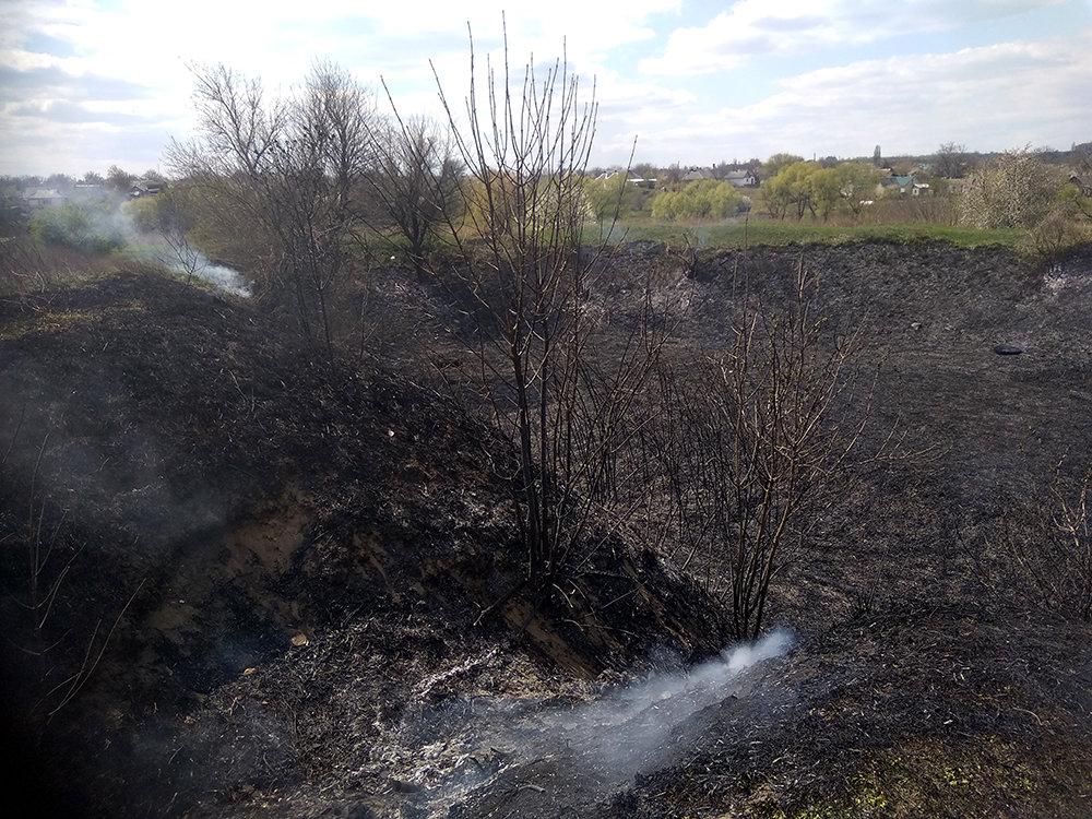 За сутки спасатели Николаевщины дважды тушили пожары в экосистемах, фото-1